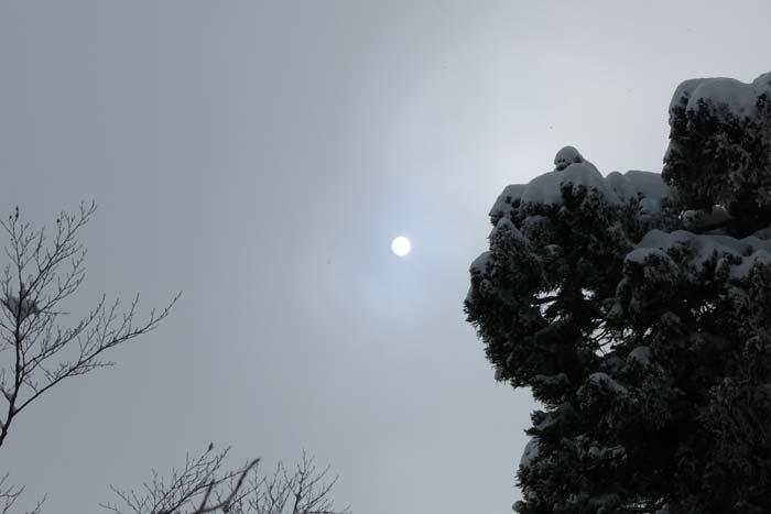 大熊谷西山稜1340を過ぎて 2014/3/15