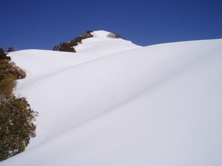 白きたおやかな稜線・釜谷山 2005/5/16