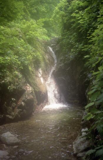 千石川支流・黒村谷 1997/6/21-22