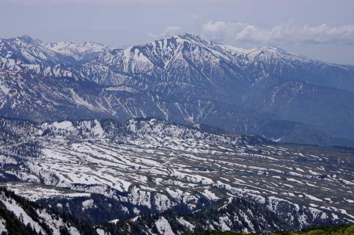 早くしないと雪がなくなってしまう 大日岳 2016/5/19