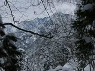 大熊山 1150まで 2013/1/12