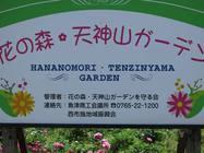 花の森・天神山ガーデン 2013/5/31