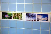 トイレのタイル補修