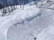 鉢山 西から東 2014/4/12-13