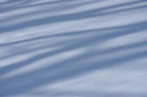 越中のトレッキング街道 春 2018/3/11